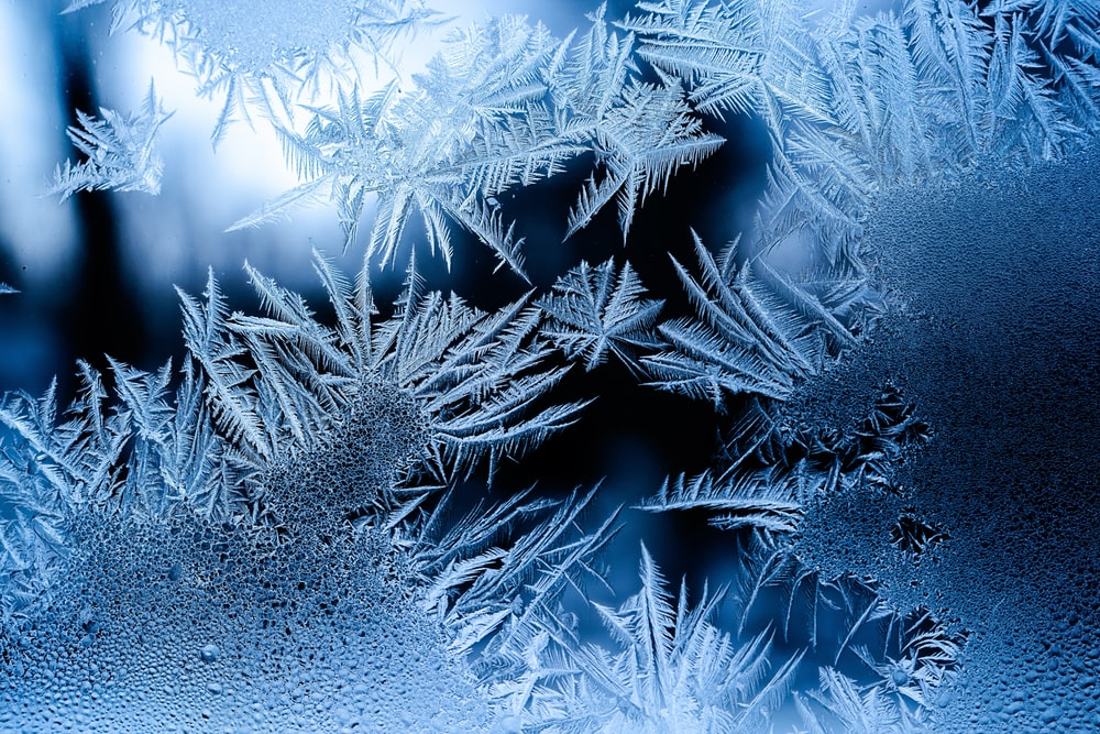 Track Cancellation 04.12.2019
